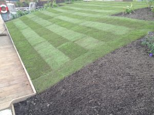 graszoden-aanleggen-na