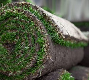 graszoden zonder netting